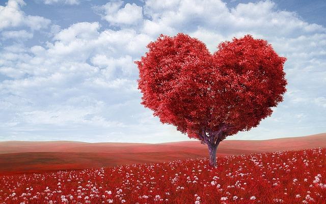 strom ve tvaru srdce jako symbol lásky.jpg